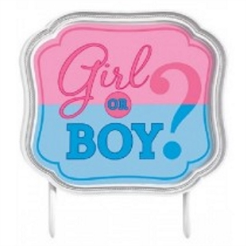 Girl og Boy Kagetopper Gender Reveal